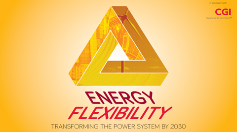 Energy flexibility: transforming the power system by 2030